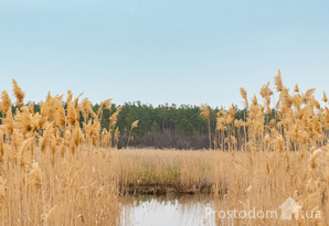Продам участок на берегу Самары с видом на лес. Песчанка, 35 соток