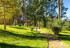 фотография - Представительство. 1200м.кв. Пуща-Водица. 62 сот. Лес. 0% комиссии!