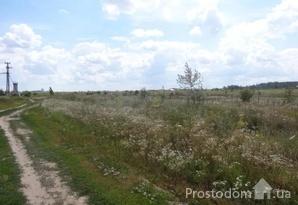 фотография - 50 соток в живописном месте (реки, озёра и хвойный лес), 15 км от Киева в с. Боб