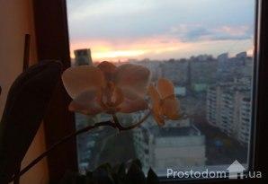 фотография - Продам 4-комн. на Маяковского с евроремонтом с мебелью.