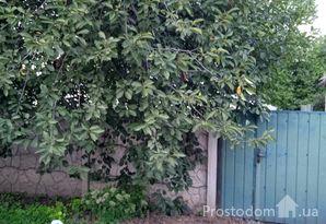 Продам ветхий домик с участком в Илларионово, рядом Днепр